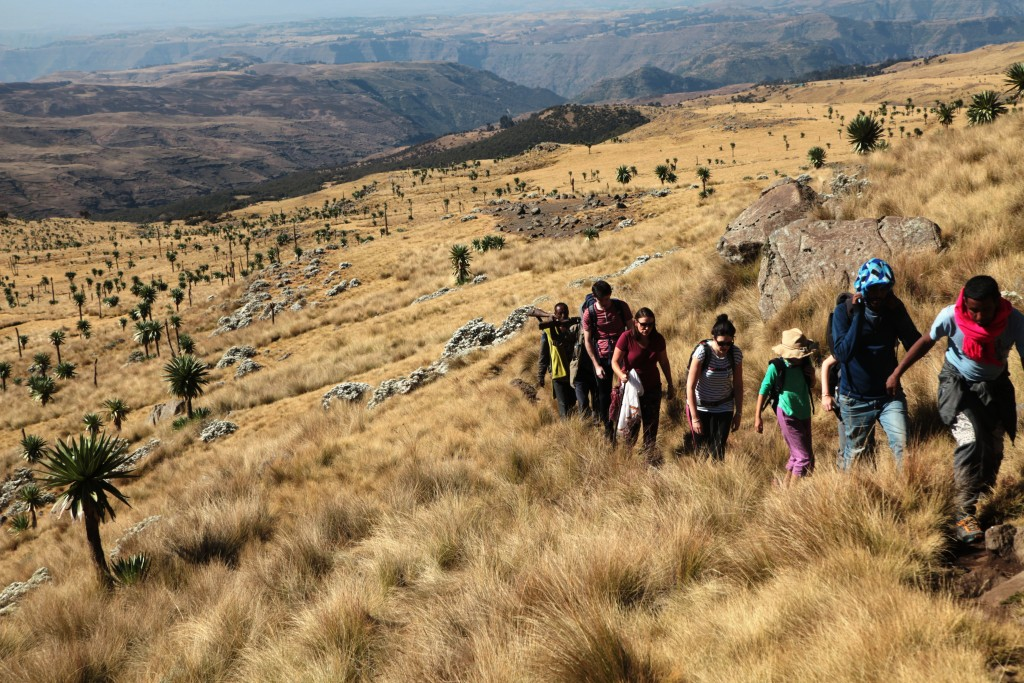 Dave, in red scarf, leading us up to Imet Gogo viewpoint in the Simien escarpment